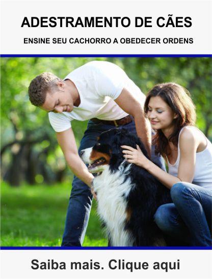 Curso de adestramento de câes